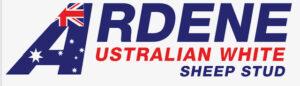 Ardene Australian White Sheep Stud