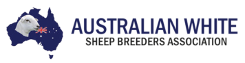 Australian White Sheep Breeders Association